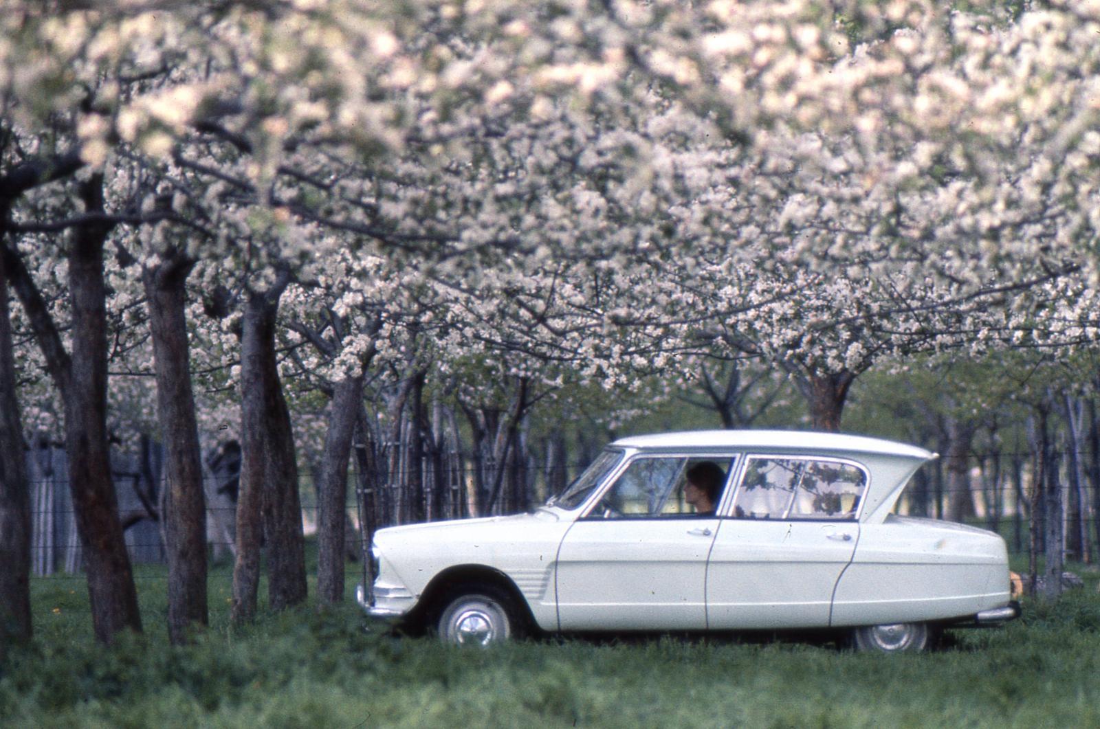 AMI 6 Berline 1963