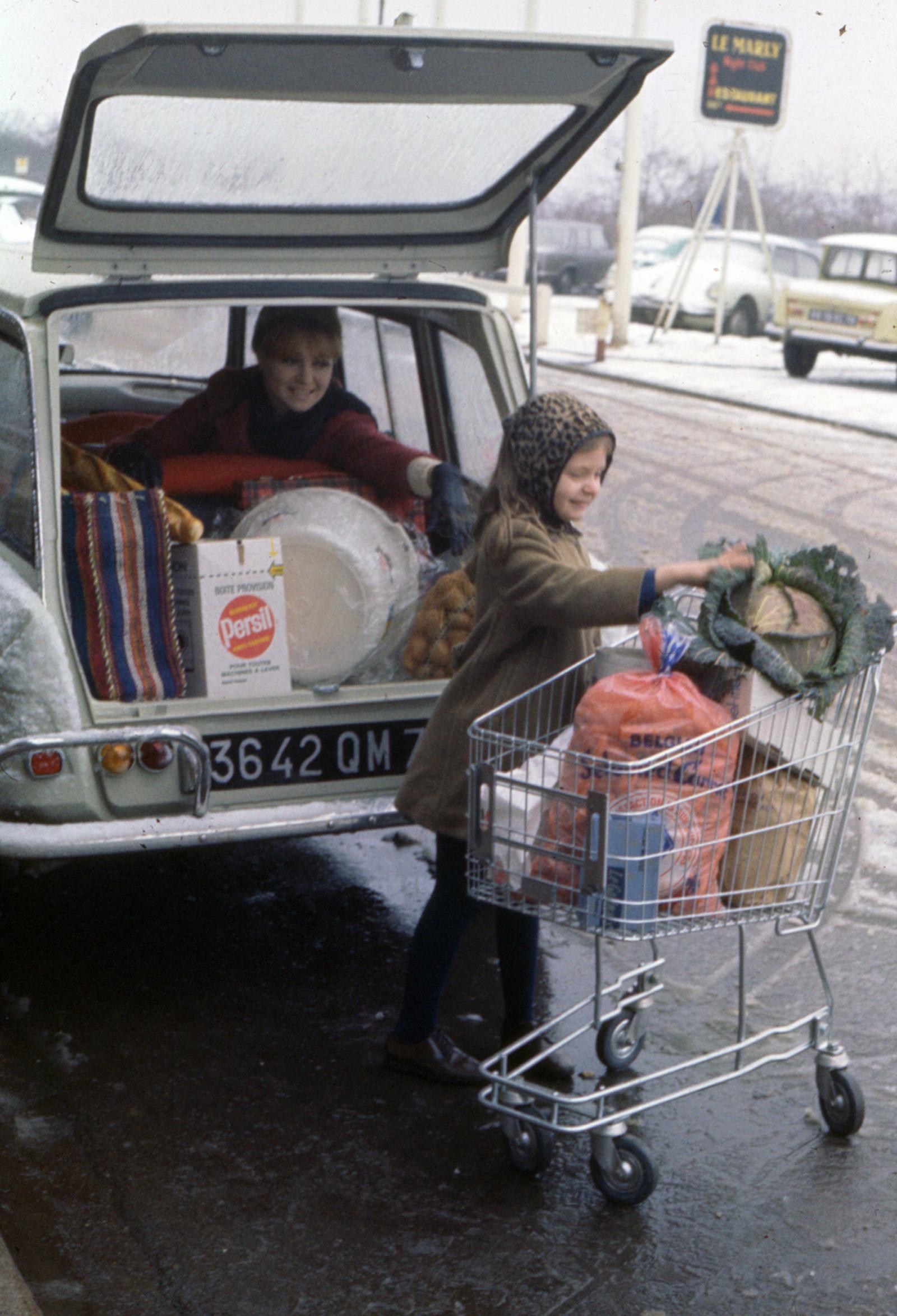 AMI 6 Break 1966 chariot